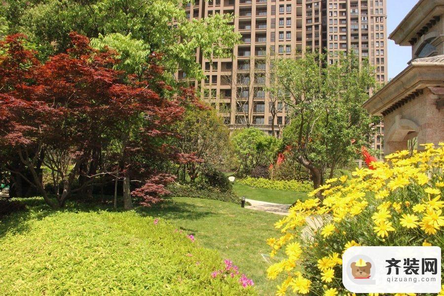 江南府邸小区绿化(2015-4-30)