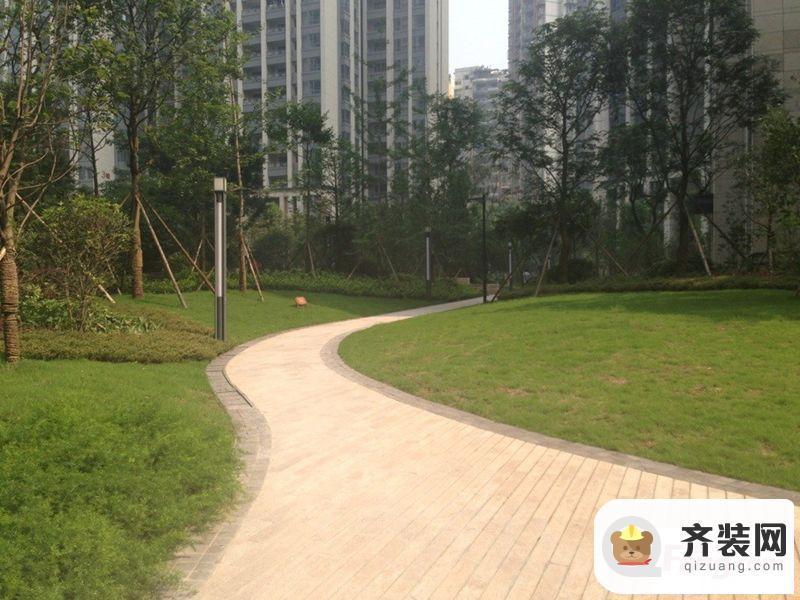 保利香雪实景图小区内绿化实景(5.26)
